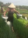 Mary farming in VietNam